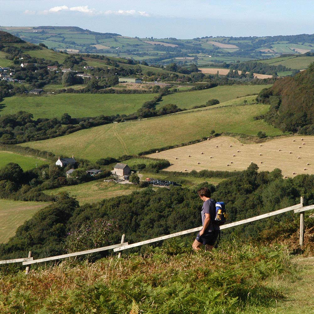 Dorset Rambling Ramblers Walk Jurassic Coast